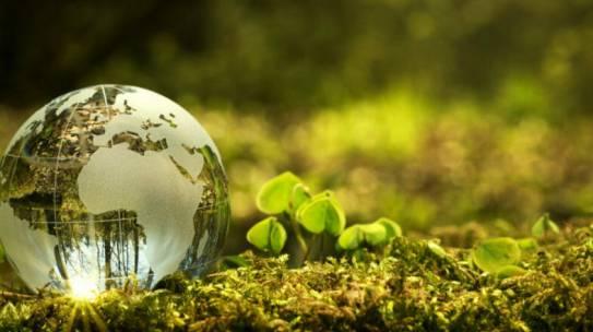 Światowy Dzień Ziemi 22.04.2021 r.
